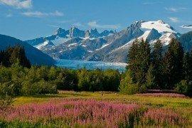 Alaska_Mendenhall Glacier